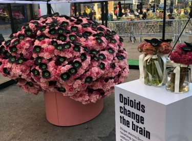 Photograph of Hope Stems art installation, a large brain sculpture made of flowers